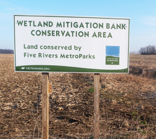 wetland_mitigation_project