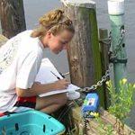 Chesapeake Bay best management practices