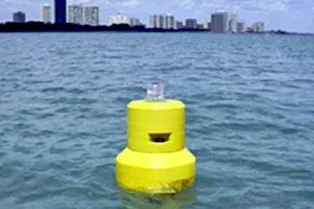 Cellular data buoys predict E. coli