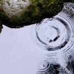 water quality sensor options
