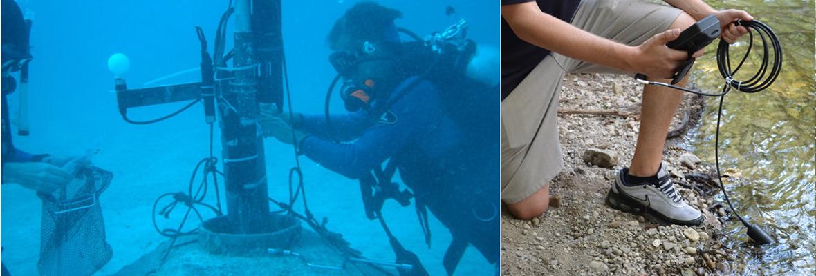 best dissolved oxygen sensors